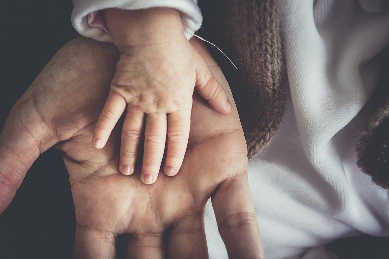 Prestación de Paternidad